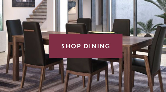 Shop Dining at Home Evolution